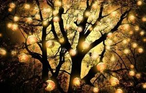 lanterns_4a5c4b5c7aec1