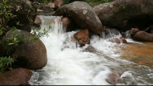 stock-footage-small-natural-river-waterfall-stream-cascades-in-high-definition-hd